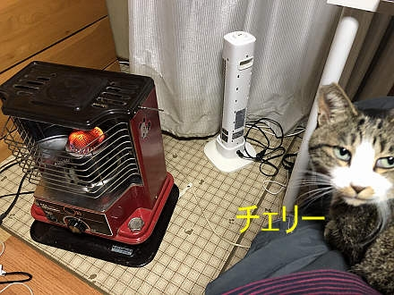911150
